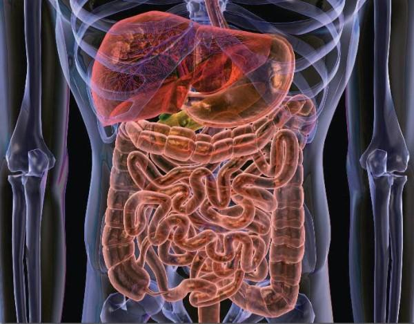 болезнь крона лечение в корее