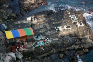 пусан морепродукты